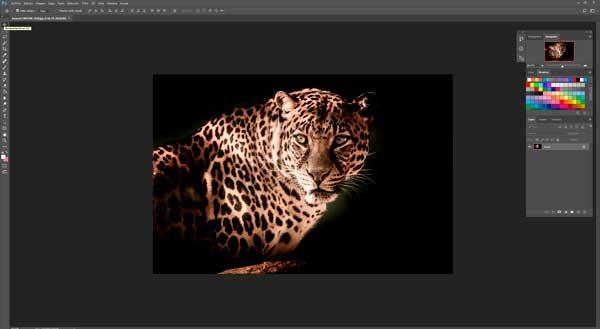 programa para arreglar fotografías