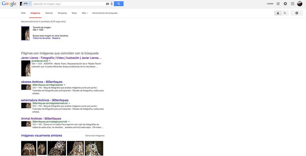 imagenes-parecidas-en-google