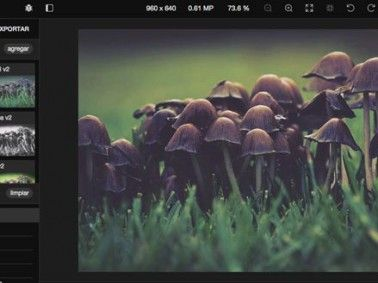 extension para navegador fotográfico