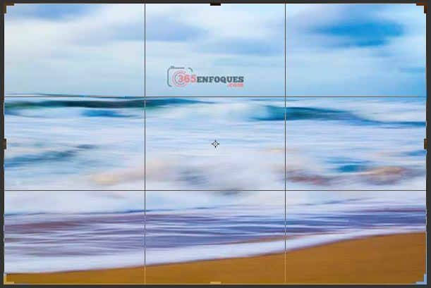 componer en fotografía digital