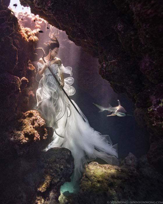 fotos-submarinas-con-tiburones
