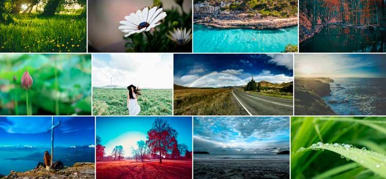 proyectos fotográficos