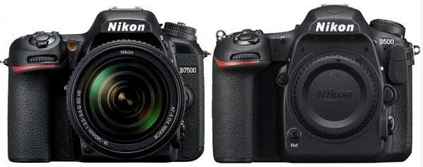 comparación entre la nikon d7500 y la nikon d500