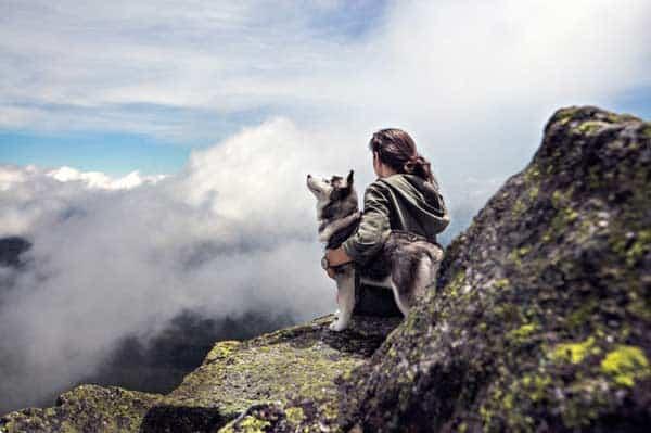 fotógrafo de mascotas