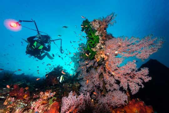 submarinista haciendo una fotografía